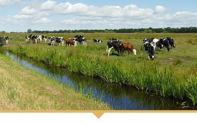 Agrarische bedrijven